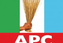 list apc governorship candidates